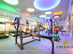 Emerald Park Spa and Gym (27)