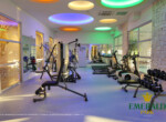 Emerald Park Spa and Gym (11)